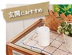 https://hanasakamura.net/files/libs/845/201901171552099589.jpg